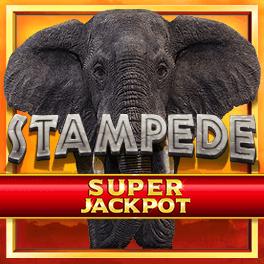 Stampede Jackpot